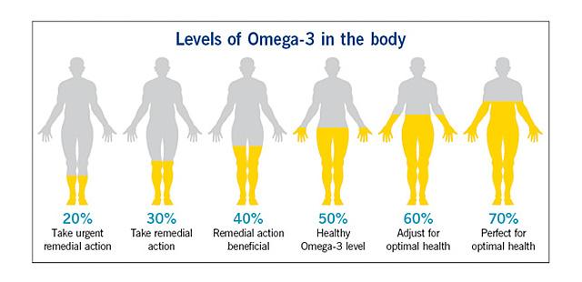 omega-3-level-in-body